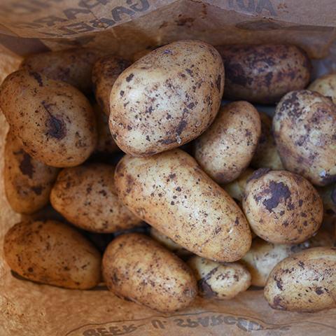 Bäcker's Spargel aus Münster online bestellen · Dazu Bäcker's leckere Kartoffeln